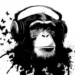 Wired Gorilla