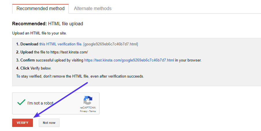 Finish the verification process in Google Search Console