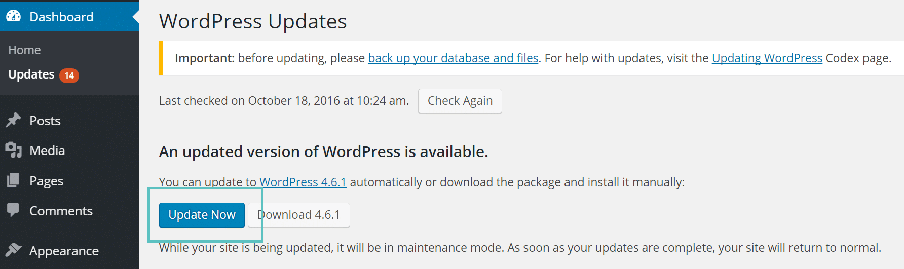 update wordpress core