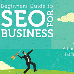 A Little Taste of The Beginner's Guide To SEO Ebook