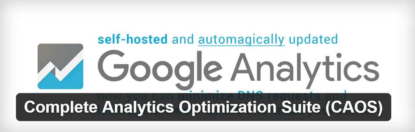 host google analytics locally plugin